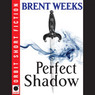 Perfect Shadow: A Night Angel Novella (Unabridged)