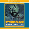 Stormsearch (Unabridged)
