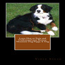 Learn How to Train and Understand Your Bernese Mountain Dog Puppy & Dog (Unabridged)