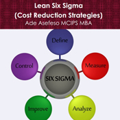 Lean-six-sigma-cost-reduction-strategies-unabridged