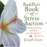 Buddha's Book of Stress Reduction: Finding Serenity and Peace with Mindfulness Meditation (Unabridged)