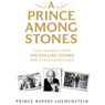 A Prince Among Stones: That Business with The Rolling Stones and Other Adventures (Unabridged)